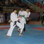 Кекушинкай считается одной из самых трудных и жёстких разновидностей карате.