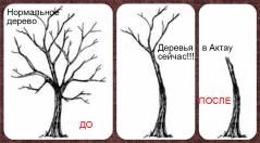 Анти-Озеленители