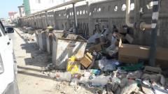 Поселок Приморский. Не вывозят мусор