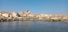 А вы знали что в Каспийском море есть крабы!