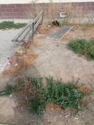 В 33 мкр. мусор никто не собирает