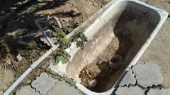 Кладбище засохло! Ну когда в Актау появится хозяин?