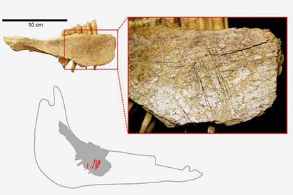 Найдены самые древние люди Америки