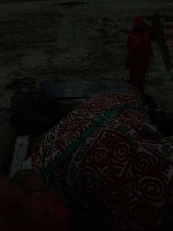 Жители Актау спасли застрявшую в степи беременную верблюдицу