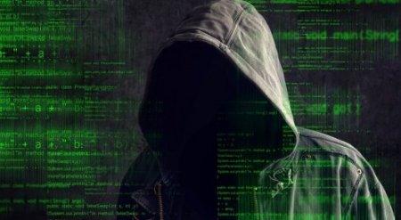 """Хакер вывел из строя 20 процентов """"темного интернета"""""""