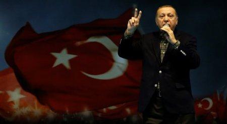"""""""Они - фашисты"""": между Турцией и Нидерландами разгорелся скандал"""
