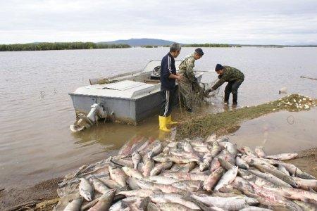 Браконьер из России поймал две тонны рыбы в Атырау