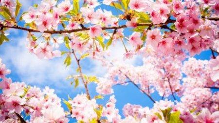 Как казахстанцы отдохнут на майские праздники