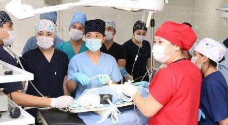 Молодым врачам пообещали по 2 миллиона тенге за переезд в Костанайскую область