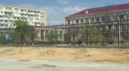 На месте демонтированных мобильных павильонов во 2 микрорайоне Актау высадили деревья