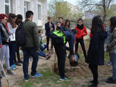Учащиеся 10-х классов лицея-школы №7 им. Н.Марабаева провели субботник