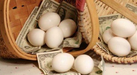 Депутат сравнил Министерство финансов с корзиной с яйцами