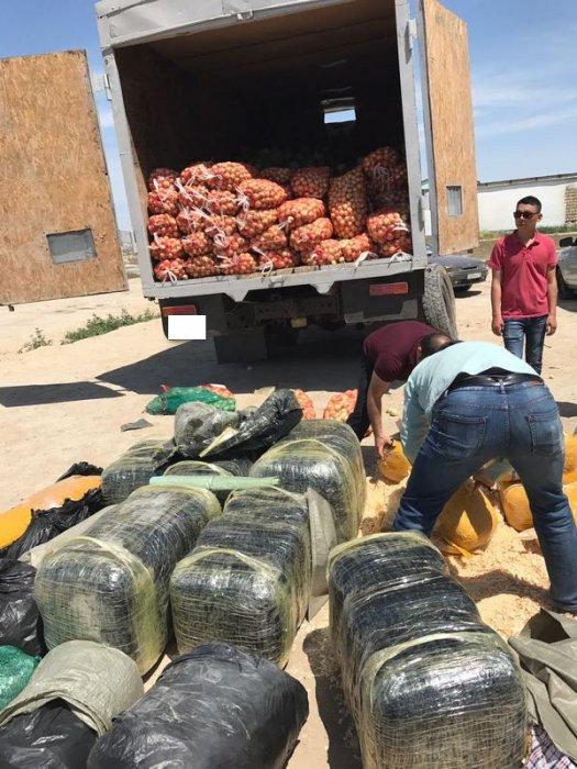 Полицейские Актау обнаружили 394 килограмма наркотиков в грузовике с овощами