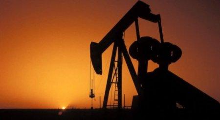 Цены на нефть поднялись до месячных максимумов накануне встречи ОПЕК