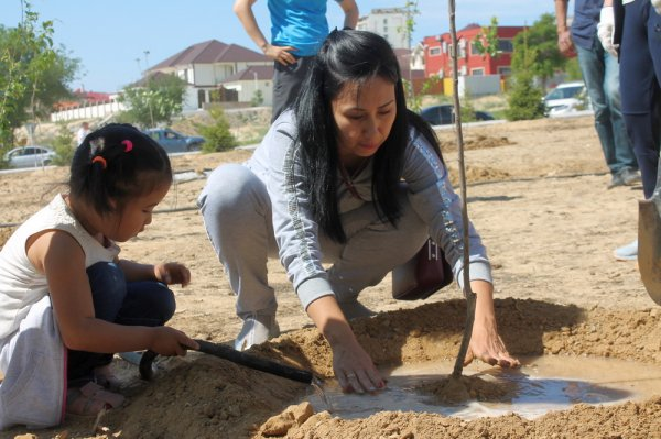 Фруктовую аллею в парке «Акбота» высадили актауские бизнесмены