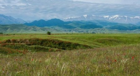Сведения о свободных землях должны быть в открытом доступе - Генпрокуратура РК