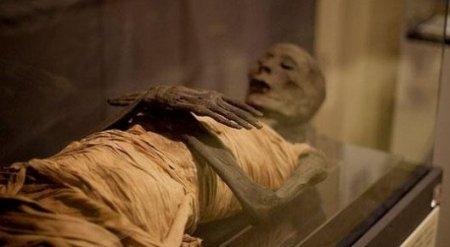 Анализ ДНК почти сотни египетских мумий удивил ученых