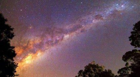 О существовании инопланетной цивилизации в Млечном Пути выяснили ученые