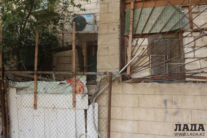 В Актау собак расстреляли в квартире хозяйки