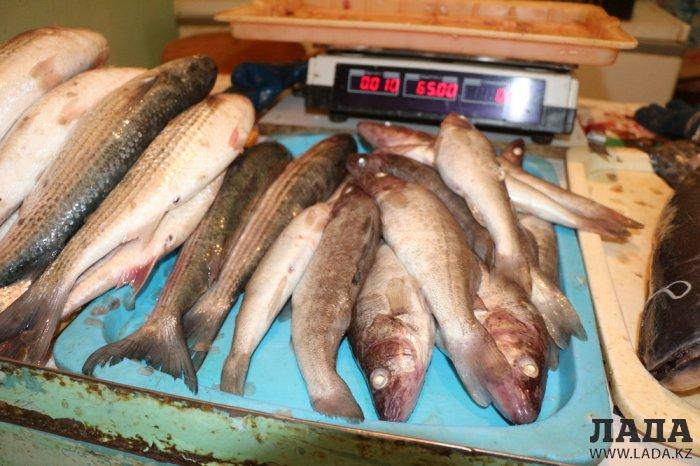 Как на рынках Актау проверяют качество и безопасность свежей рыбы