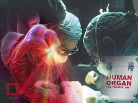 Названа стоимость операции по пересадке сердца в Казахстане