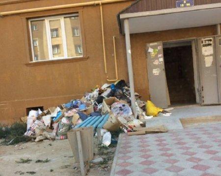 ТОО «Калажолдары»: За выброс мусора в неустановленных местах предусмотрена административная ответственность