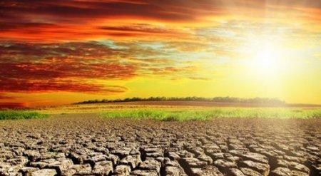 Глобальное потепление будет резким - ученые