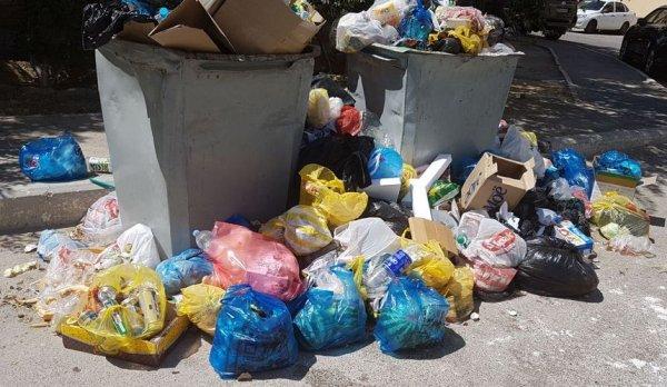 Зловонье мусора