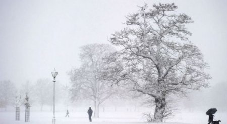 Грядущая зима станет самой холодной за 100 лет - СМИ