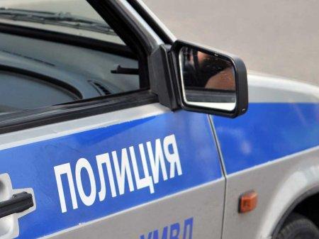В Москве пьяный мужчина искусал сержанта полиции