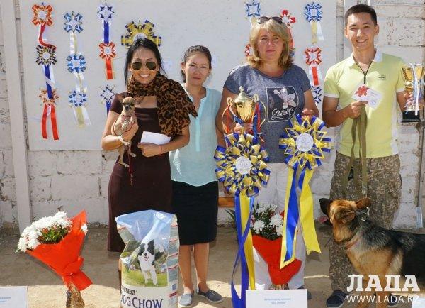 В Мангистауской области прошла международная выставка собак