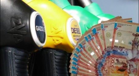 МНЭ РК выясняет, есть ли причины для роста цен на бензин