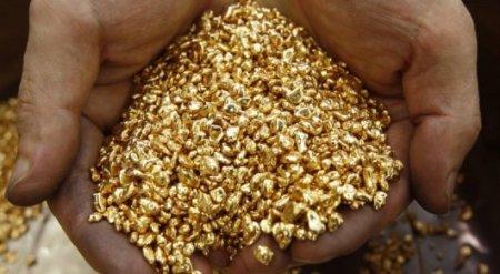 """""""Выведем из тени"""". Казахстанцам могут разрешить добывать золото"""