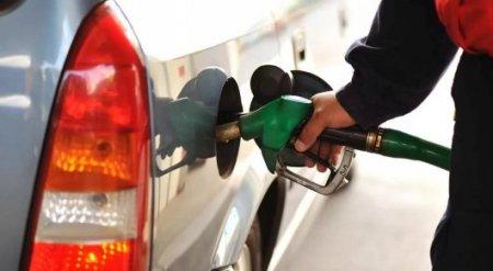 Правительство проигнорировало поручение Президента - сенаторы о дефиците бензина
