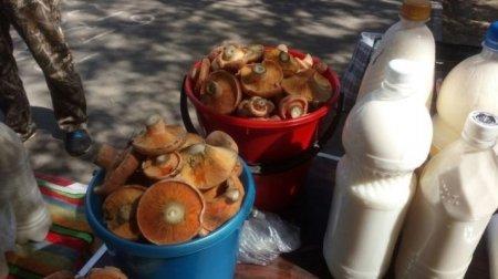 Торговать на рынках грибами и пирожками запретили в Казахстане