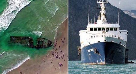 К берегам Калифорнии прибило корабль-призрак, заполненный крысами-каннибалами
