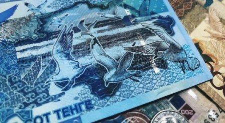 Залетела на Каспийское море, перепутала - Нацбанк о чайке на купюре номиналом 500 тенге