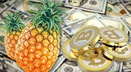 """Анонимный """"ананасовый"""" Bitcoin-филантроп раздает миллионы долларов"""