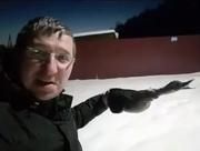 «Суровый город»: В Астане утка замерзла на лету