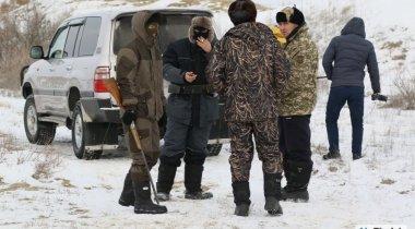 Волчица мстит жителям аула за убийство своего арлана в Атырауской области