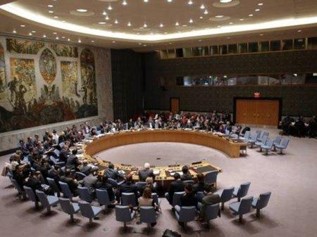 Казахстан приступил к председательству в Совете Безопасности ООН