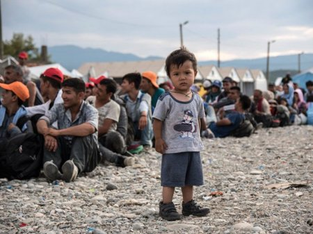 ООН попросила страны предоставить 40 тысяч мест для расселения беженцев