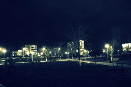 Ночной Парк