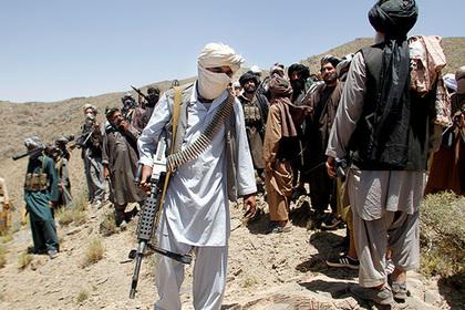 Талибы решили отказаться от войны и поработать