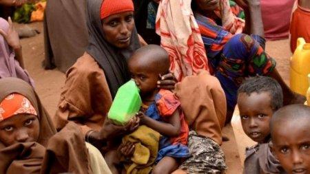 Число голодающих в мире увеличилось на 11 млн человек – ООН