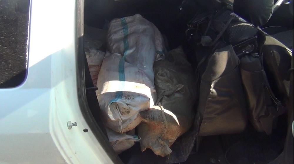За два дня полицейские Мангистау изъяли у браконьеров около 200 килограммов осетровой рыбы