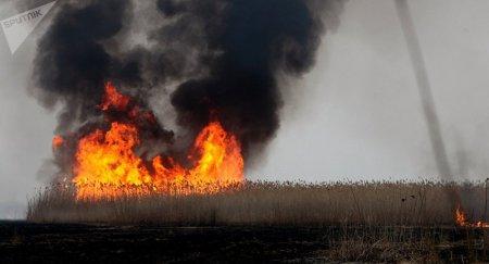Крупный пожар тушат в природном резервате у побережья Каспия