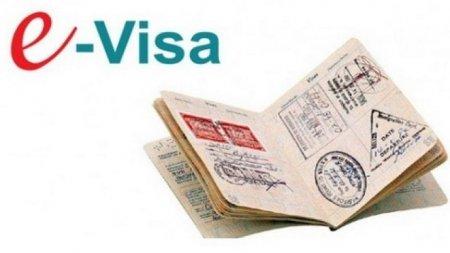 Электронные визы введут в Казахстане в 2018 году