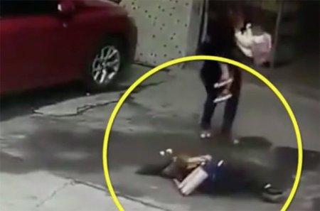Упавшая с неба собака нокаутировала китаянку