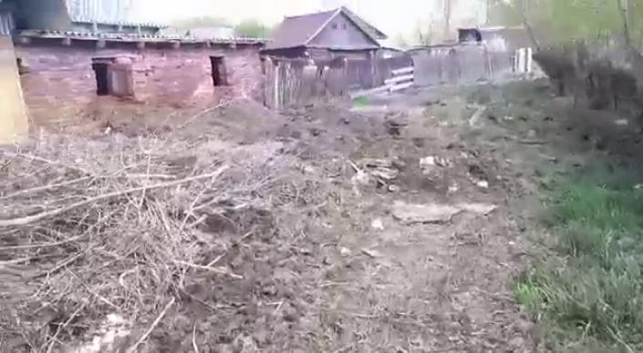 Трупы животных возле дома депутата встревожили жителей села в ВКО